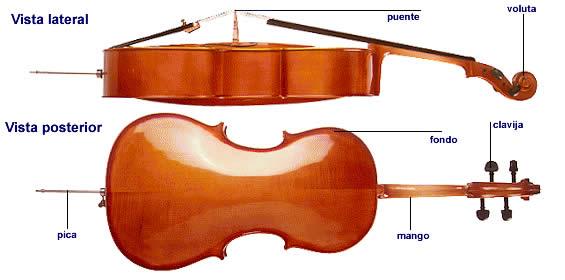 Partes del violonchelo